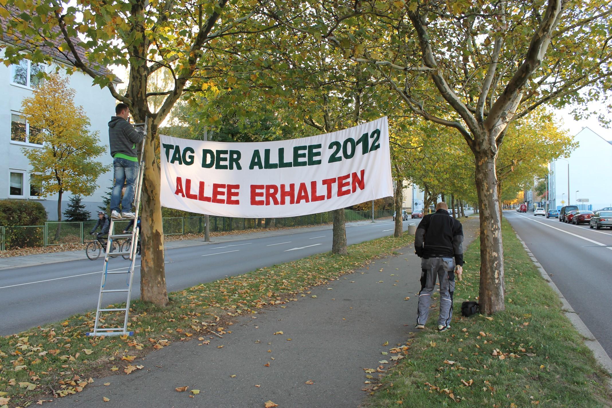 tag-der-allee-reichenhainer-strasse-chemnitz-002