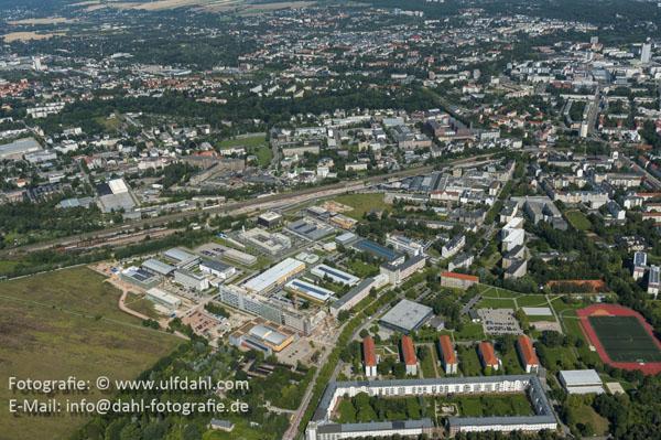 Allee 20120724-_ULF1281Ulf Dahl 600